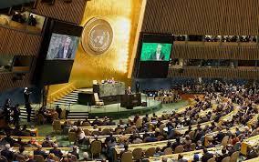 Entrevista sobre la reforma del Consejo de Seguridad de la ONU