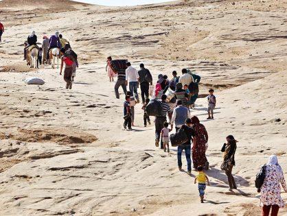 Causas de los últimos movimientos migratorios forzados